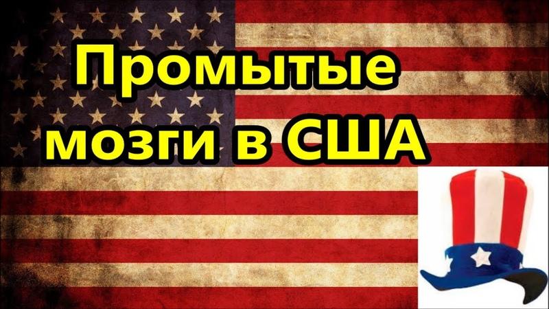 США Промытые мозги в Америке Вдребезги расколотая Америка Америка американцы жизнь в Майами Флорида
