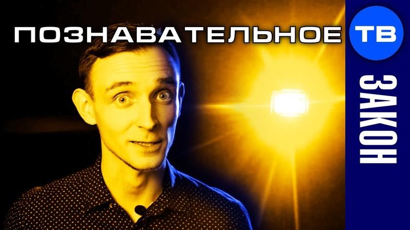 Евгений Пупырин Бизнес на лохах Шокирующая правда Артём Войтенков
