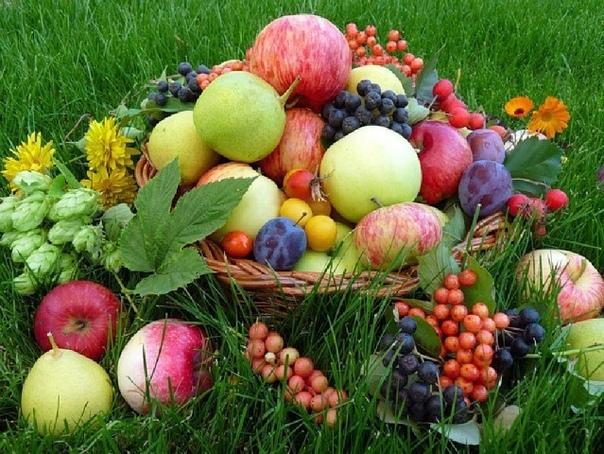 Секрет долголетия очень прост: ешьте больше фруктов