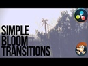MrAlexTech BLOOM Transitions! Davinci Resolve 16 5 Minute Friday 48