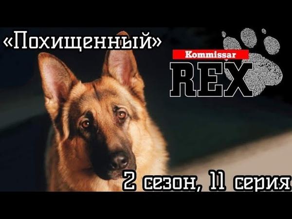Комиссар Рекс 2 сезон 11 серия Похищенный