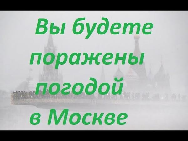 Вы будете поражены погодой в Москве