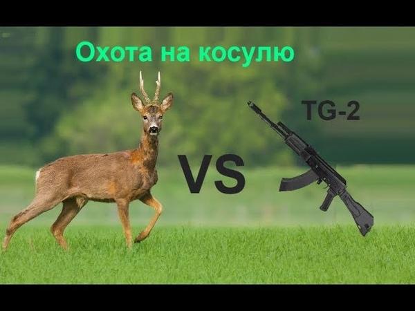 Охота на косулю с сайги TG 2 366ткм.