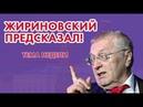 Жириновский - новый пророк или блестящий аналитик?!