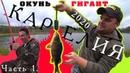 КАРЕЛИЯ 2020 - рыбалка осенью. Не пошел в школу из-за дикого клева! Окунь - гигант! Часть 1.