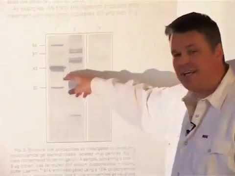 Dr Stefan Lanka Pandemien durch Viren sind Betrug