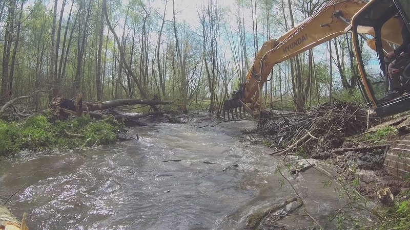 Using Excavator To Remove A Beaver Dam Разрушение плотины