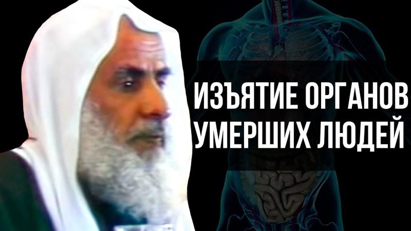 Изъятие органов умерших людей для пересадки Шейх аль Усаймин