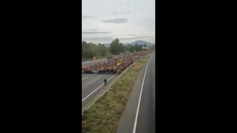 An diesem Demonstrationszug in Spanien sollten sich die Deutschen mal ein Beispiel nehmen 💪🏻