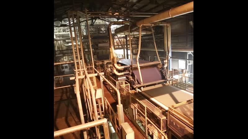 Запуск производственных линий в цехе ДСП