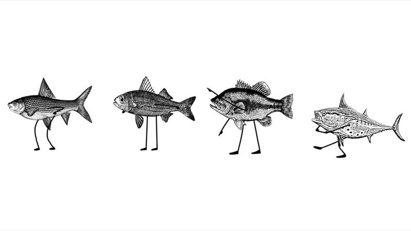 VOCALOID UTAU Original It is cool to be a fish IA galaco Namine Ritsu Amaga Eru FL chan