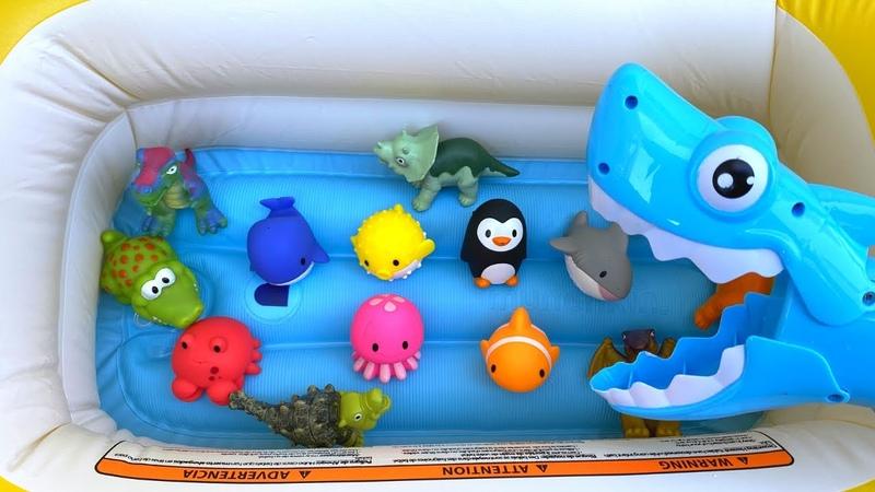 Learn Sea Animals Ocean Animals Dinosaur Names ENGLISH KOREAN 바다 동물 알아보기 해양 동물 공룡 이름 ENGLISH KOREAN