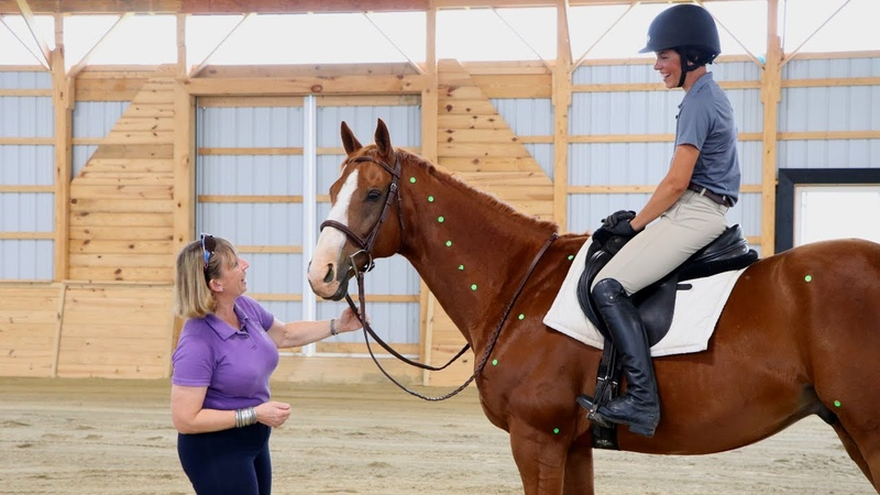 How to Ride the Posting Trot Free Online Workshop with Wendy Murdoch