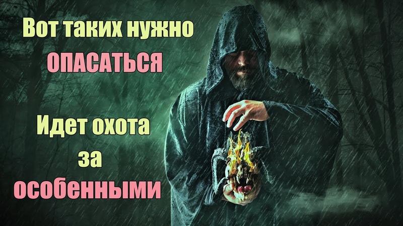 Идет охота за Особенными людьми будьте осторожны Кто такие Избранные и Особенные Сон Разума