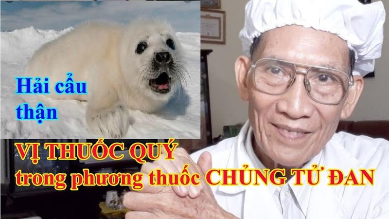 Joint de rein un médicament précieux dans le remède du Chung Tu Dan l Nguyen Thieu Official