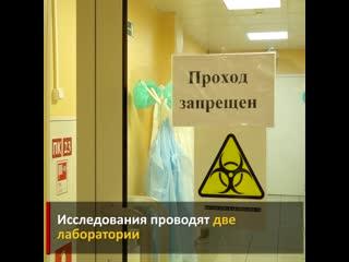 В Вологде и Череповце будут делать анализы на коронавирус