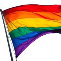 трансы гей бисексуалы