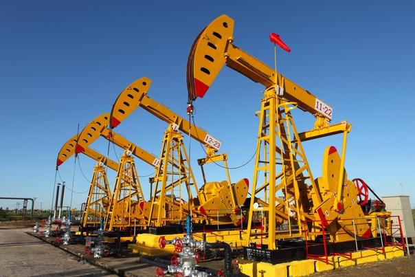 Свердловская область начнёт добычу нефти к 2024 году. Об ...