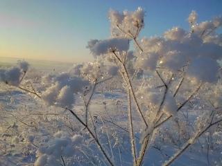 Добавляйте сюда свои фотографии Красноярска.