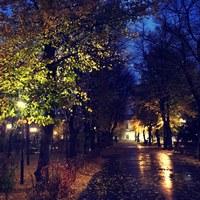 Фото Светланы Заревой