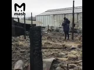 Граждане Вьетнама погибли при пожаре в Подмосковье
