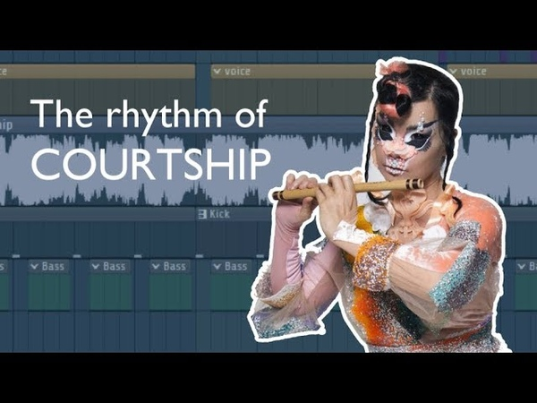 Analysis of the Rhythm of Courtship Björk