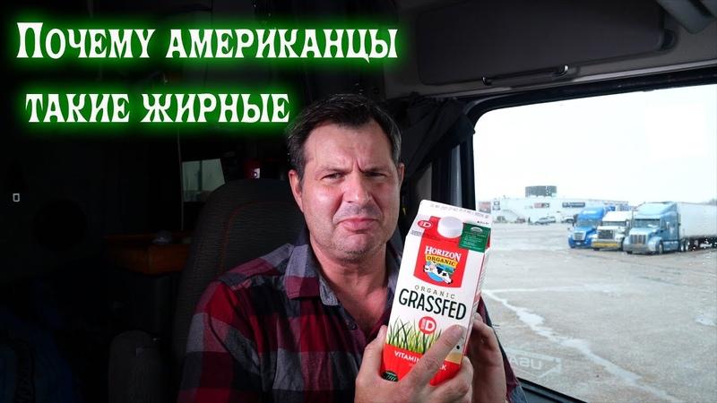 Почему американцы жирные Алекс Брежнев
