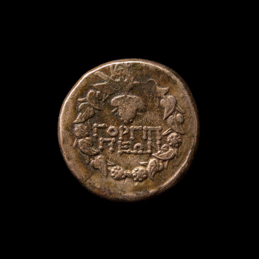 Монета Горгиппии, изображение №2