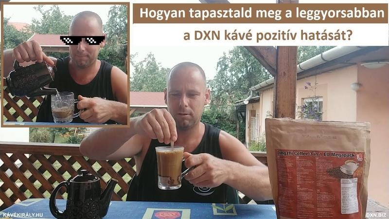 Hogyan tapasztald meg a leggyorsabban a DXN Ganoderma gyógygombás kávé pozitív hatását