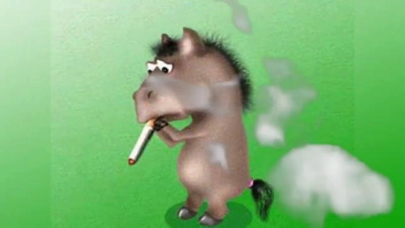 ЦБС им Толстого Девчонки оно вам надо 31 мая Всемирный день без табака