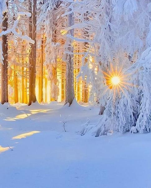 Пусть будет настоящая  зима!