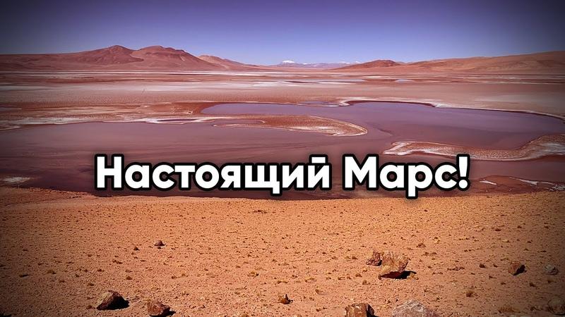 Свершилось Трубите в горн Бейте в колокола Агентство Nasa показало людям настоящие фото Марса
