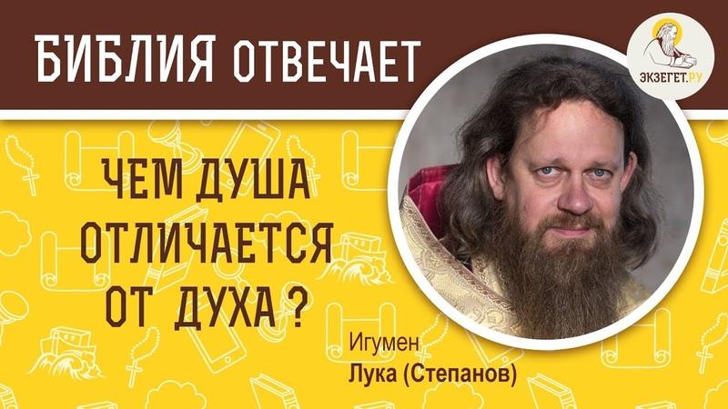 ЧЕМ ДУША ОТЛИЧАЕТСЯ ОТ ДУХА Дух душа и тело О личности Библия отвечает Игумен Лука Степанов