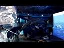 Приморский океанариум   Primorskiy Oceanarium