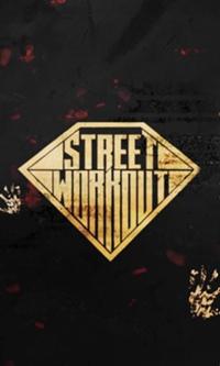 Street Workout 2.0