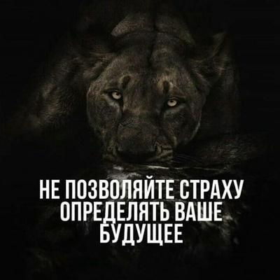 Паша Иванов