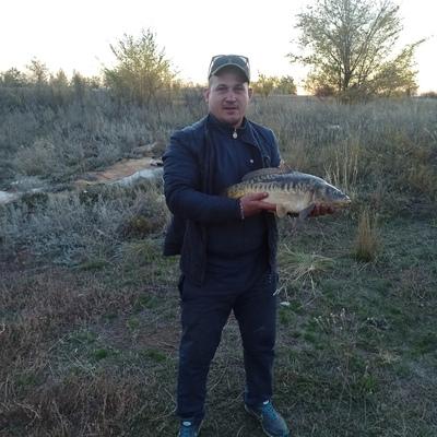 Дмитрий, 37, Orsk