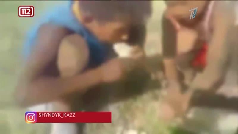 Ешь с кожурой как корова мужчина жестко наказал маленьких детей