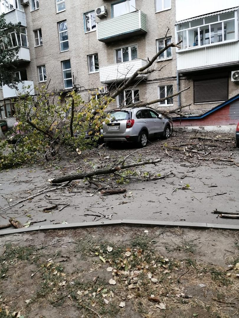 Сегодня в Азове сильный ветер натворил делов. Instagram Обзор