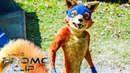 Swiper The Fox Dora And The Lost City Of Gold Official Digital Promo Clip NEW 2019 HD