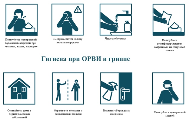Гигиена при гриппе, коронавирусной инфекции и других ОРВИ, изображение №1