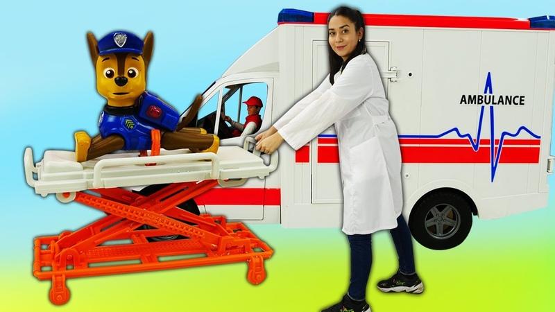 Lustige Schule für Kinder. Chase Spielzeug von der Paw Patrol ist krank. Zeichentrick für Kinder.