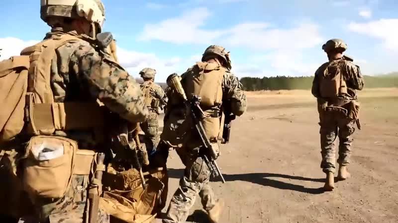 U S Marines Air Assault Exercise Forrest Light 2020