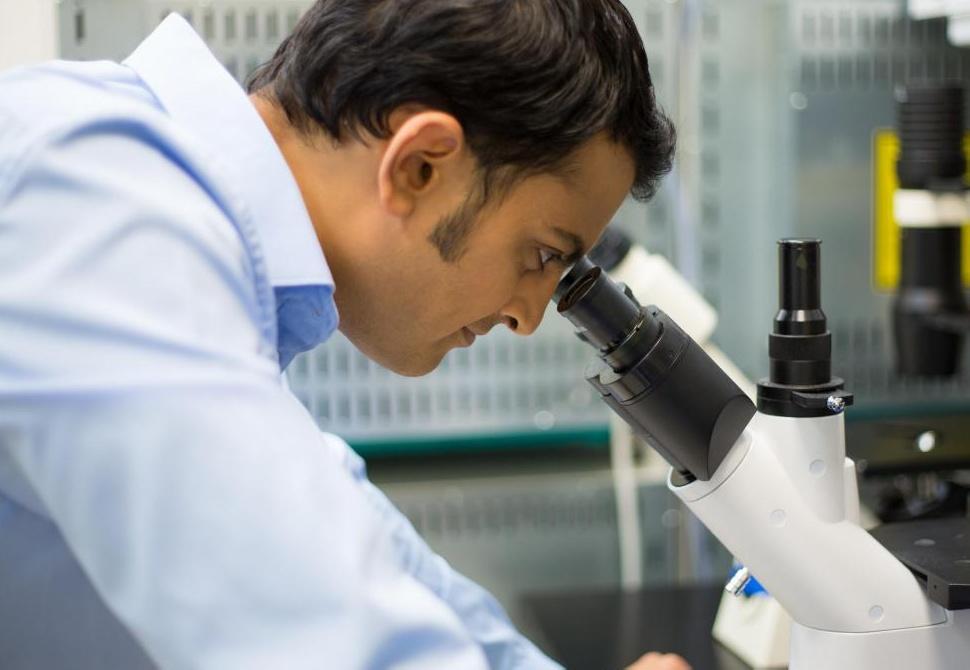 Патология - это изучение изменения тканей, клеток и органов в организме в результате заболевания.