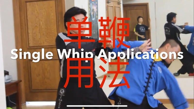 Tai Chi Wu Hao Single Whip Applications 单鞭用法 by Master Jimmy Wong